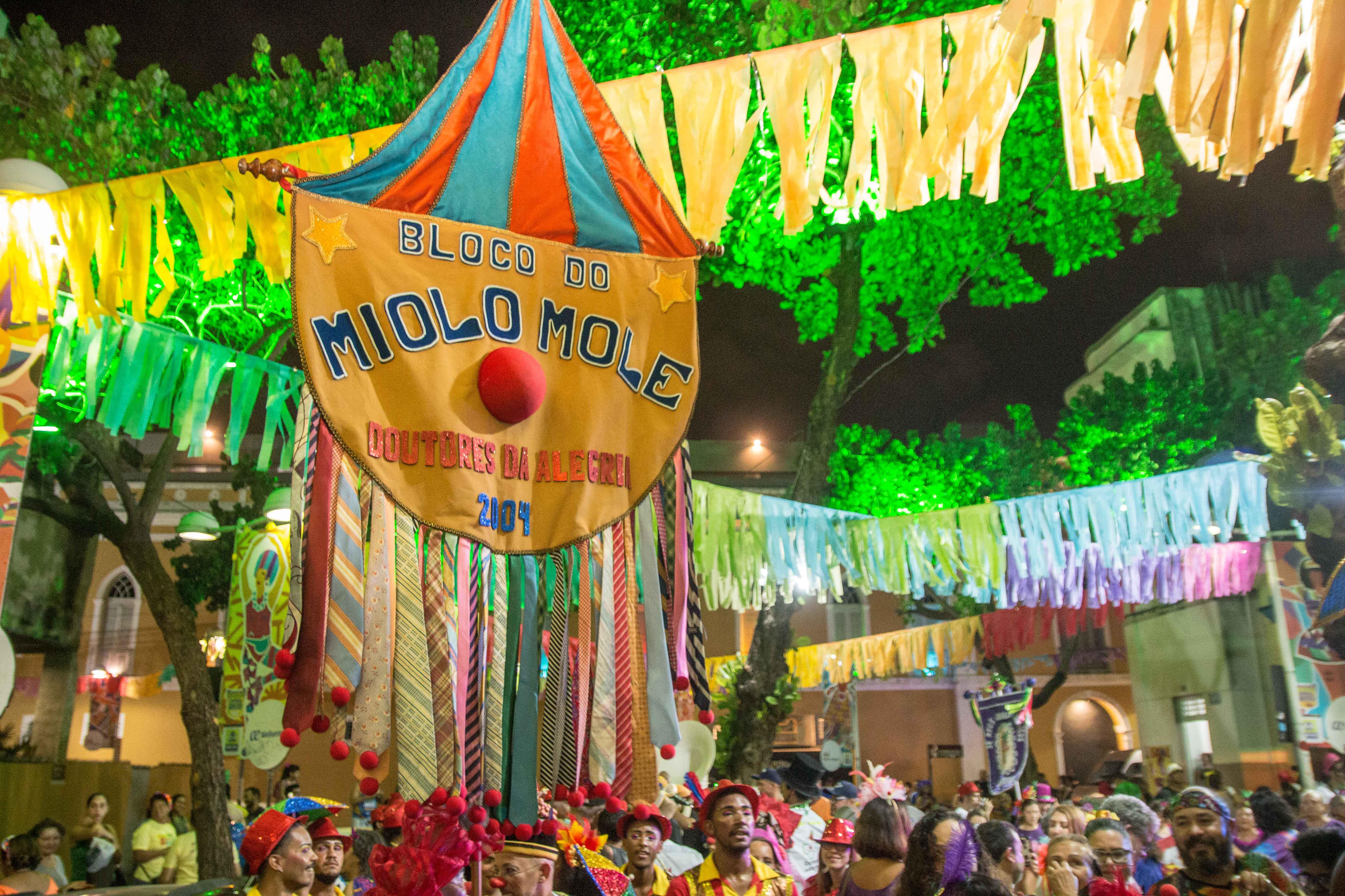 Bloco do Miolo Miolo Mole desfila dia 20 de fevereiro em Recife